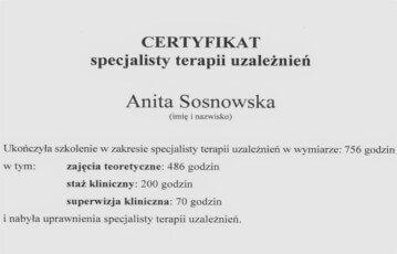 anita-sosnowska - want
